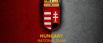 чемпионат Венгрии по футболу