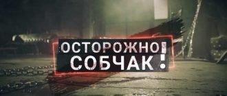 Осторожно, Собчак смотреть онлайн